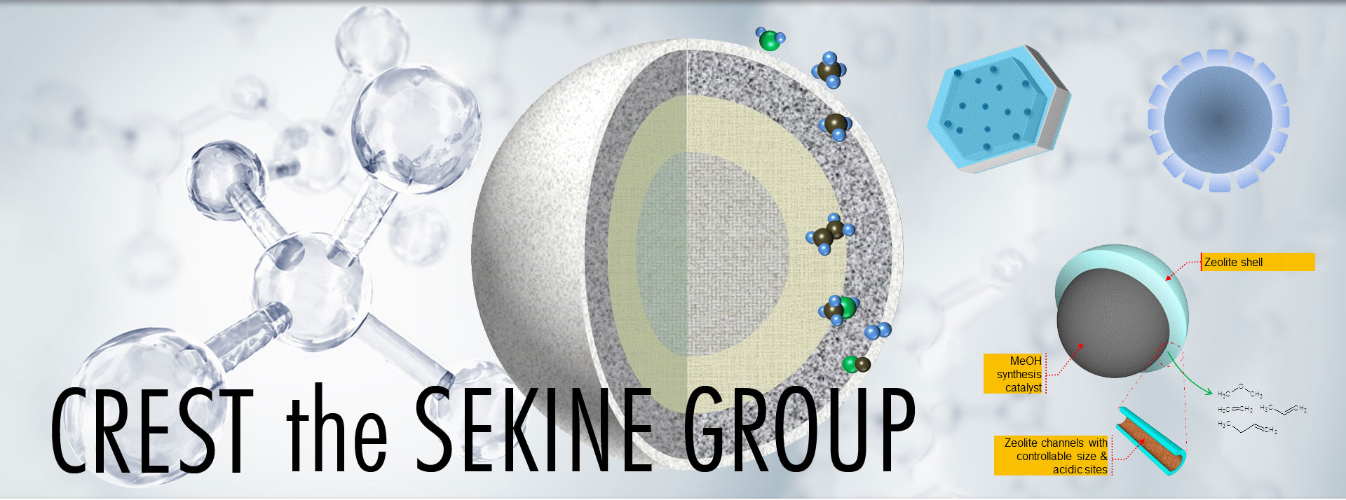CREST the SEKINE group